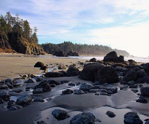 forks, washington, and la push image