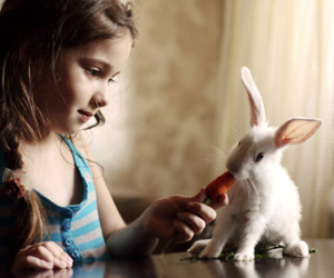 cute, girl, and bunny image