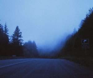 forest, road, and blue image