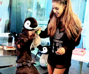 ag, ariana grande, and queen grande image