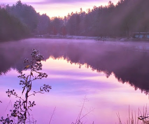 nature, purple, and landscape image