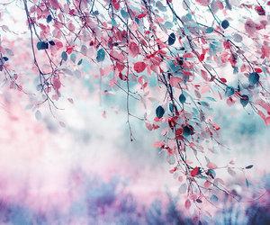 pink, purple, and tree image