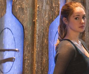 divergent, dauntless, and Shailene Woodley image