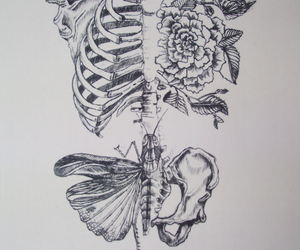 black and white and skeleton image