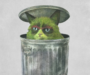 cat, lol, and grouch image