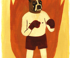boxer, dog, and fight image