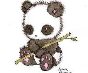 panda, animal, and drawing image