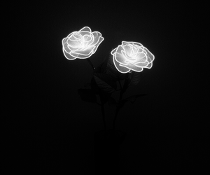 alternative, flower, and grunge image