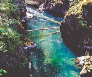 nature, water, and hipster image