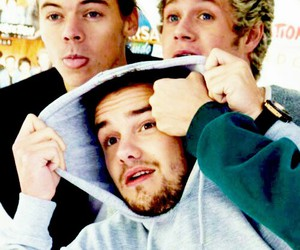 horan, payne, and niall image