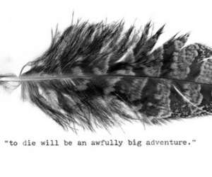 quote, feather, and peter pan image