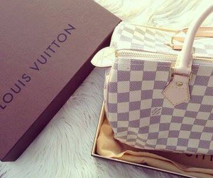 bag, inspiration, and louisvuitton image