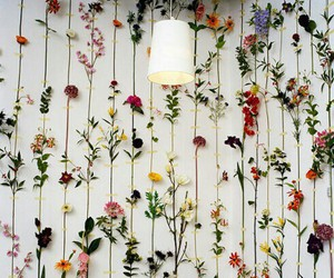 flowers, wall, and decoration image