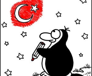 turkey and penguen image