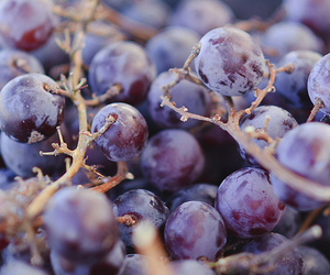 grapes, photography, and fruit image
