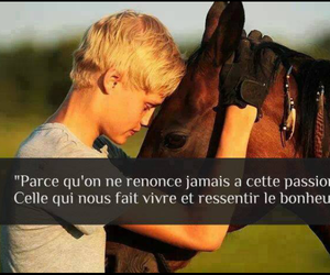 horse and passion image