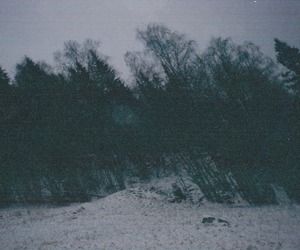 photography, winter, and snow image