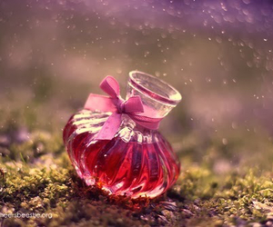 pink, magic, and photography image
