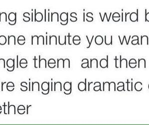 siblings, funny, and sisters image