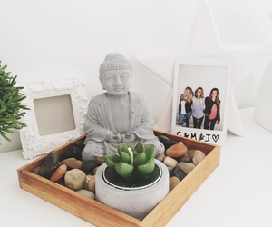 Bouddha, plant, and plante image