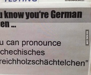 german, funny, and quote image