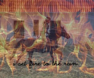fire, horse, and feeling image