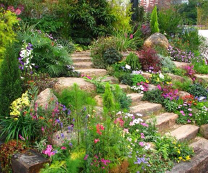 aesthetic, garden, and theme image