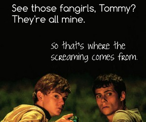 fandom, funny, and newt image