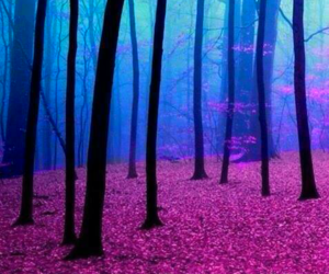 forest, tree, and pink image