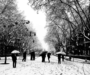 hiver, paysage, and snow image