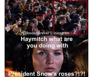 hunger games and haymitch image