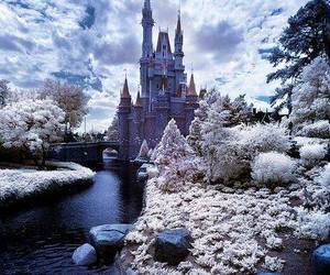 winter and castle image