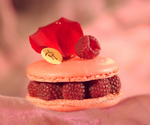 delicious, lovely, and macaron image