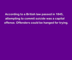 british, Law, and suicide image