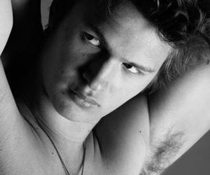 sexy, ansel elgort, and nos étoiles contraire image