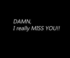 come back, damn, and miss you image