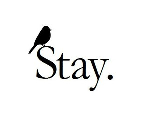 stay, bird, and quote image