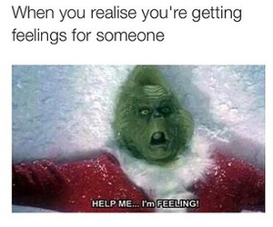 feelings, grinch, and funny image