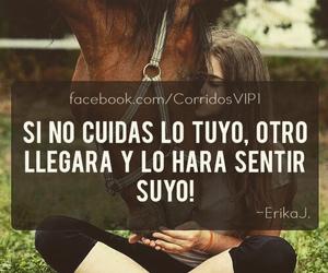 ivy queen and corridos vip image