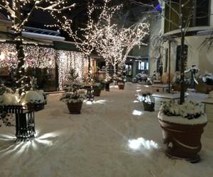 christmas, magical, and lights image