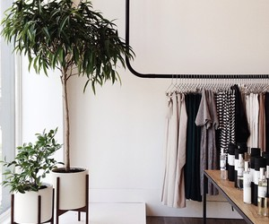 clothes, plants, and white image