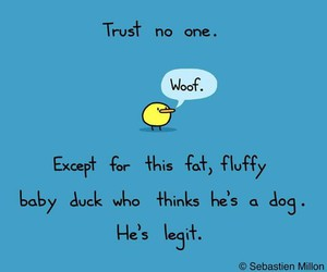 duck, except, and funny image