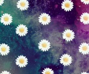 background, flowers, and galaxy image