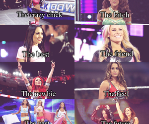 wwe, wwedivas, and briebella image