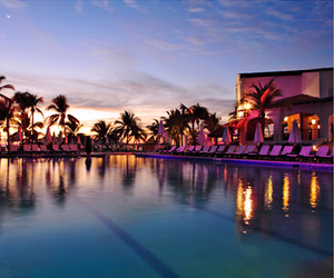 hotel, palm trees, and pool image