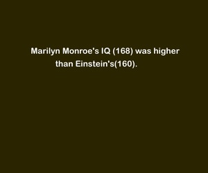 conspiracy, Marilyn Monroe, and einstein image
