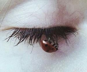 alternative, eye, and face image