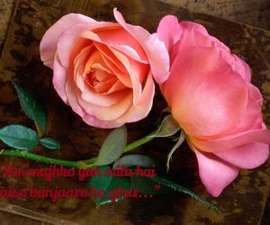 love and banjaara image