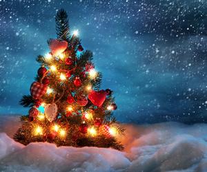 christmas, snow, and tree image