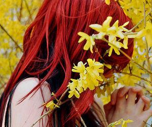 flower, yellow, and red image